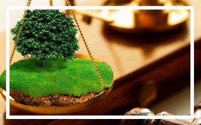 Обзор практики по земельным спорам